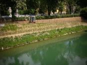 Eko škarpa zeleni še pred koncem vseh del