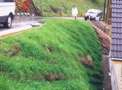 Ozelenitev strmega vkopa za hišo