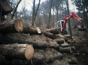 Ekološka sanacija problema
