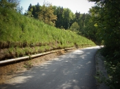 BVC- System: erfolgreiche Lösung gegen Erosion. Das Material rutscht nicht mehr auf die Straße.