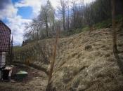 Biotechnische Stabilisierung der Grube hinter dem Haus