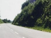 Vegetation hat das zuvor steile erosionsgefährdete Gelände vollkommen bedeckt