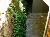 Erosionsgefährdete steile Gräben hinter Häusern werden zu üppig bewachsenen grünen Naturwänden