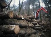 Öko-Sanierung als Problemlösung